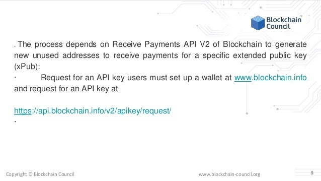 What is a blockchain api how can you integrate in your website