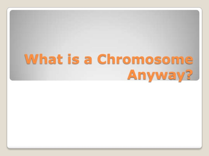 What is a Chromosome              Anyway?