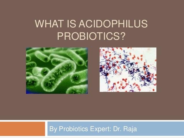WHAT IS ACIDOPHILUS PROBIOTICS? By Probiotics Expert: Dr. Raja