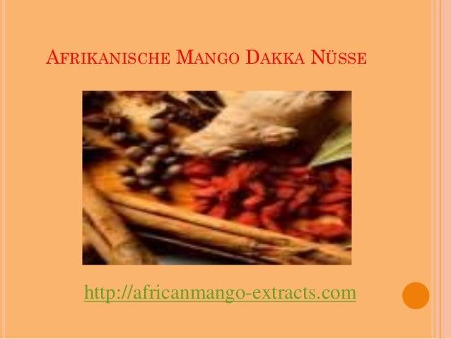 AFRIKANISCHE MANGO DAKKA NÜSSE   http://africanmango-extracts.com