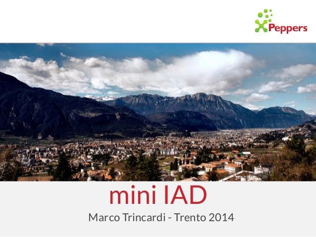 mini IAD Marco Trincardi - Trento 2014