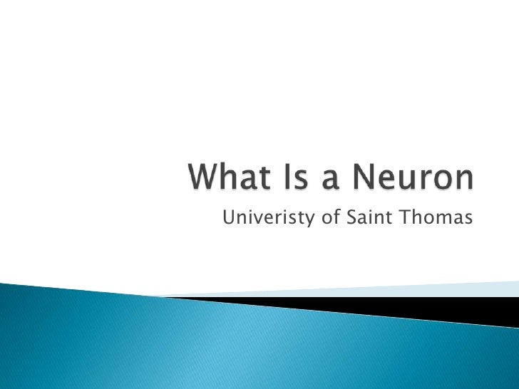 What Is a Neuron<br />Univeristy of Saint Thomas<br />