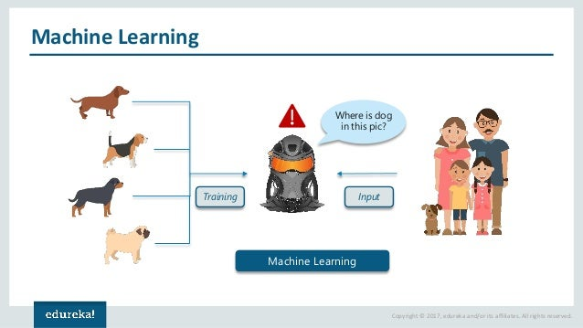 Copyright © 2017, edureka and/or its affiliates. All rights reserved. Machine Learning Training Where is dog in this pic? ...