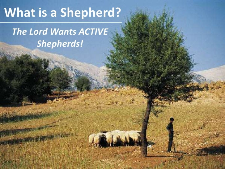 What is a Shepherd?<br />The Lord Wants ACTIVE Shepherds!<br />