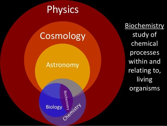 relationship of physics to biology and chemistry