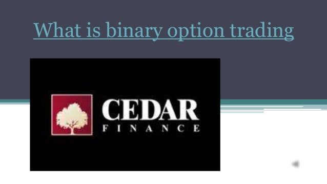 What is binary option