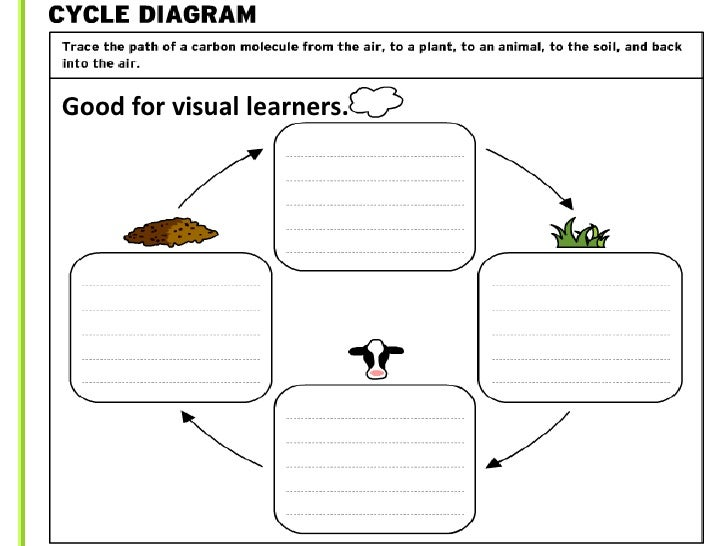 brainpop graphic organizer cycle diagram answers choice image how to guide and refrence. Black Bedroom Furniture Sets. Home Design Ideas