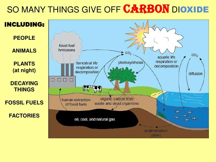 What is carbon and why is it important?