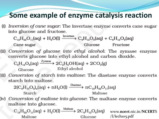 What Is Catalysis Its Type And Its Application