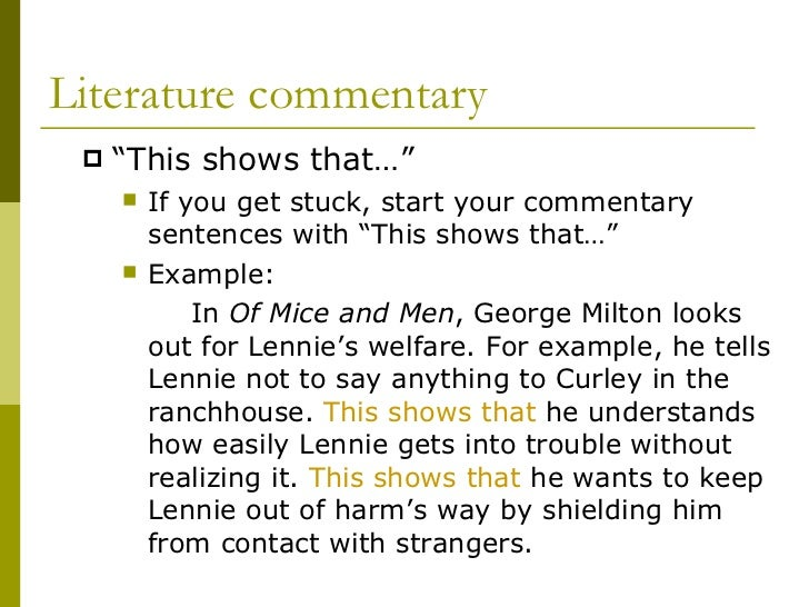 what is commentary 8 literature commentary