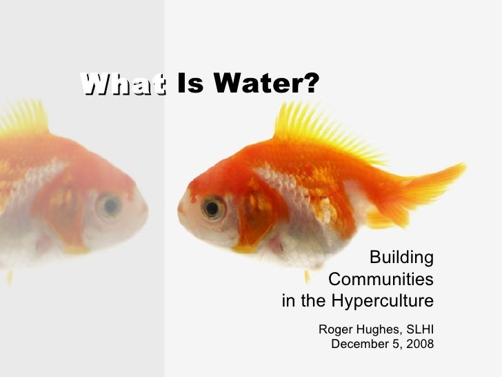 What  Is Water? Building Communities in the Hyperculture Roger Hughes, SLHI December 5, 2008