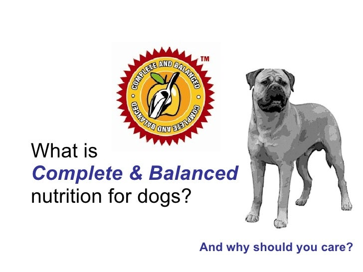 What is Complete & Balanced   nutrition for dogs? And why should you care?
