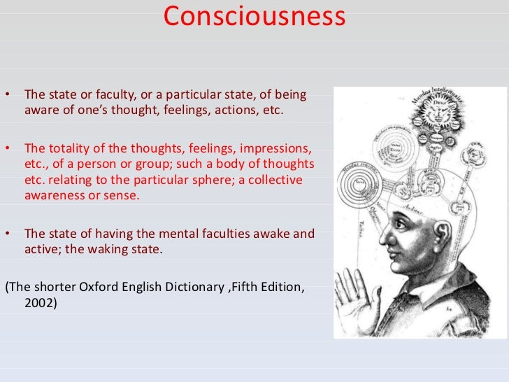collective consciousness examples