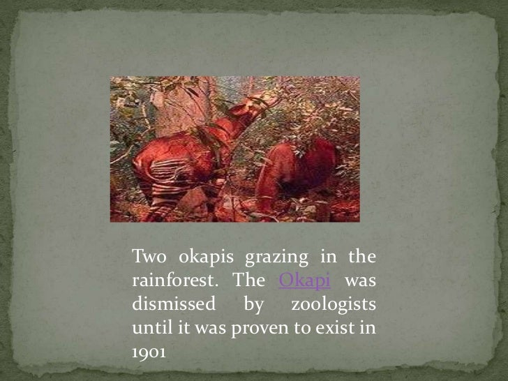 What Is Cryptozoology? - Essortment