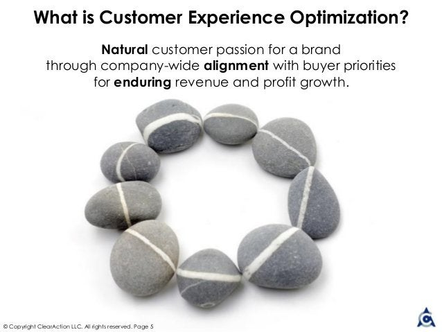 Natural customer passion for a brand through company-wide alignment with buyer priorities for enduring revenue and profit ...