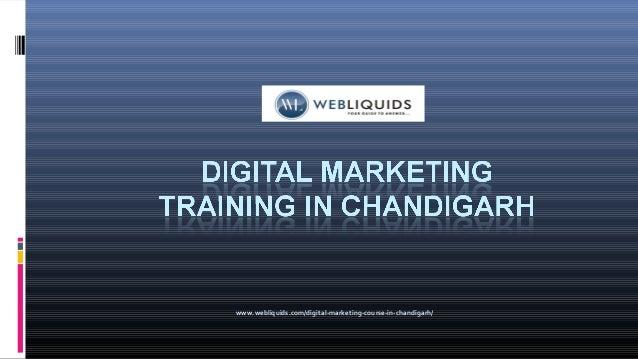 www.webliquids.com/digital-marketing-course-in-chandigarh/