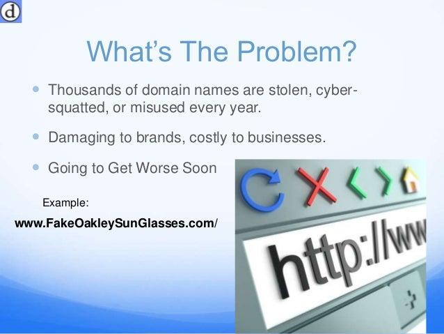 What is DomainSkate? Slide 2