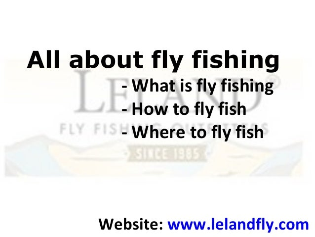 All about fly fishing- What is fly fishing- How to fly fish- Where to fly fishWebsite: www.lelandfly.com
