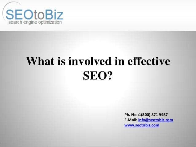 What is involved in effective SEO?  Ph. No.:1(800) 871 9987 E-Mail: info@seotobiz.com www.seotobiz.com