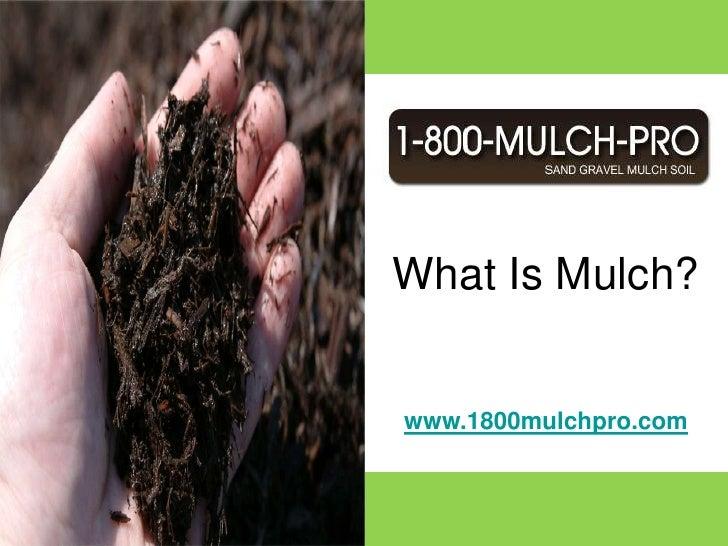 What Is Mulch?<br />www.1800mulchpro.com<br />