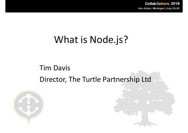 WhatisNode.js? TimDavis Director,TheTurtlePartnershipLtd