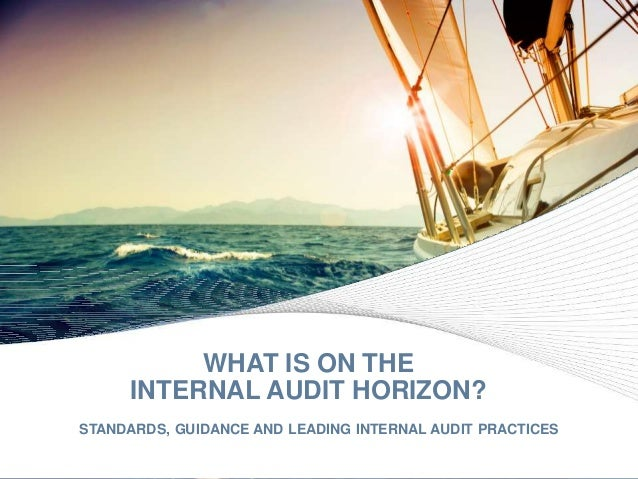 © 2016 Protiviti Inc. WHAT IS ON THE INTERNAL AUDIT HORIZON? STANDARDS, GUIDANCE AND LEADING INTERNAL AUDIT PRACTICES