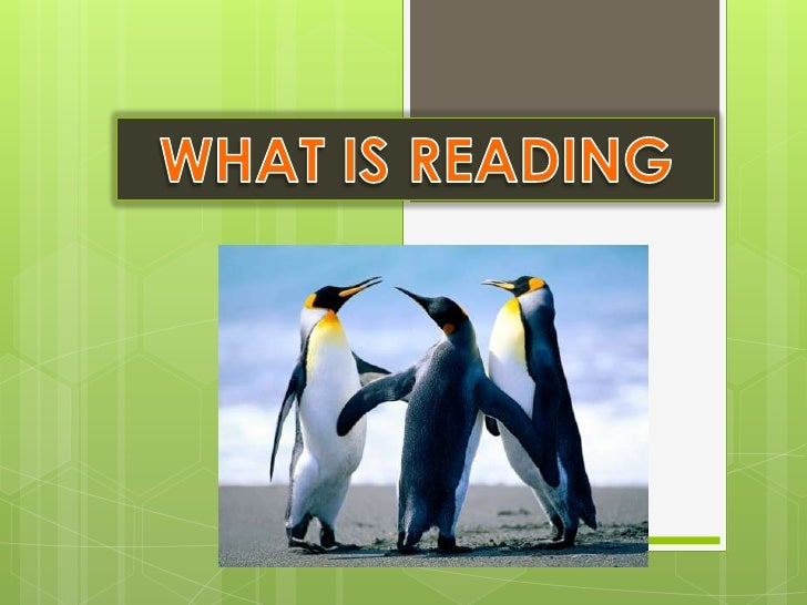 WHAT IS READING<br />