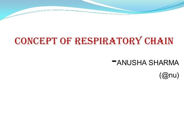CONCEPT OF RESPIRATORY CHAIN                 -ANUSHA SHARMA                          (@nu)