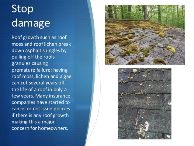 5. Stop Damage Roof ...