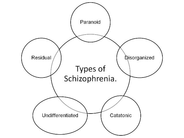 schizophrenia and its types essay Does schizophrenia increase the risk of violence: a literature                 wwwrcpsychacuk/pdf/harrop,%20sophia%20-%20essaypdf.