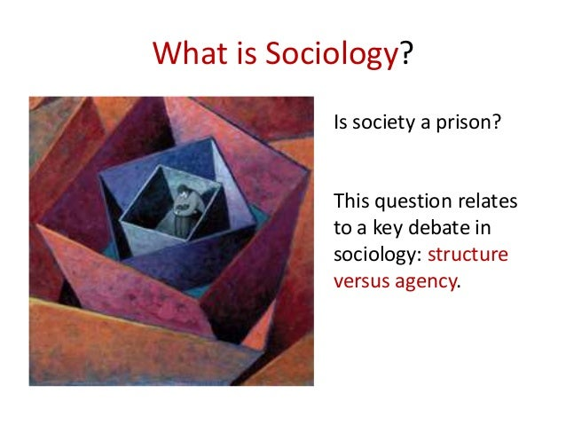 """seeing and thinking sociology Sociology and social reform: public sociology this book's subtitle is """"understanding and changing the social world"""" the last several pages were devoted to the subtitle's first part, understanding."""