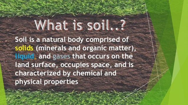What is soil for What 5 materials make up soil