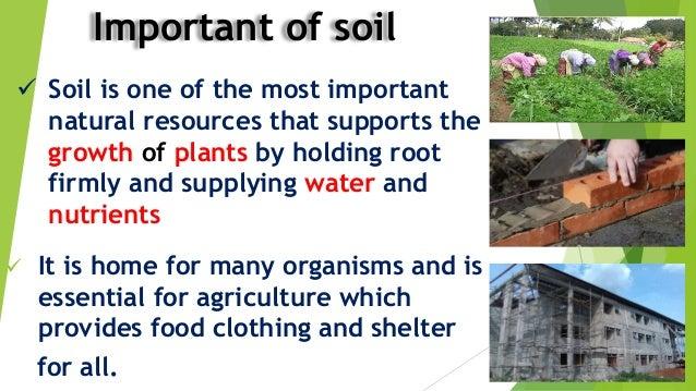 What is soil for Explain soil