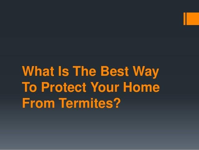 What Is The Best Way To Protect Your Home From Termites?