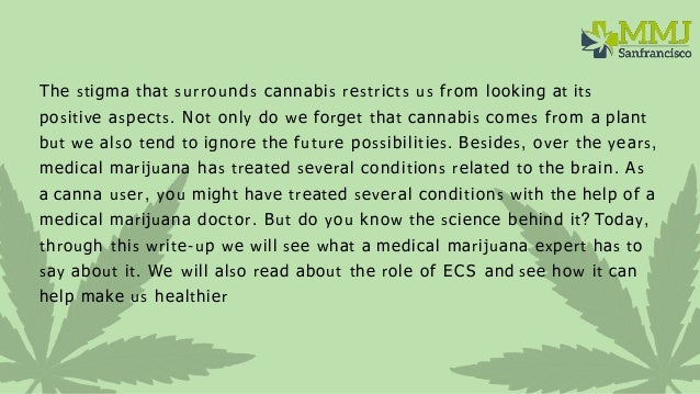 What is the endocannabinoid system and does it make us healthier  Slide 2