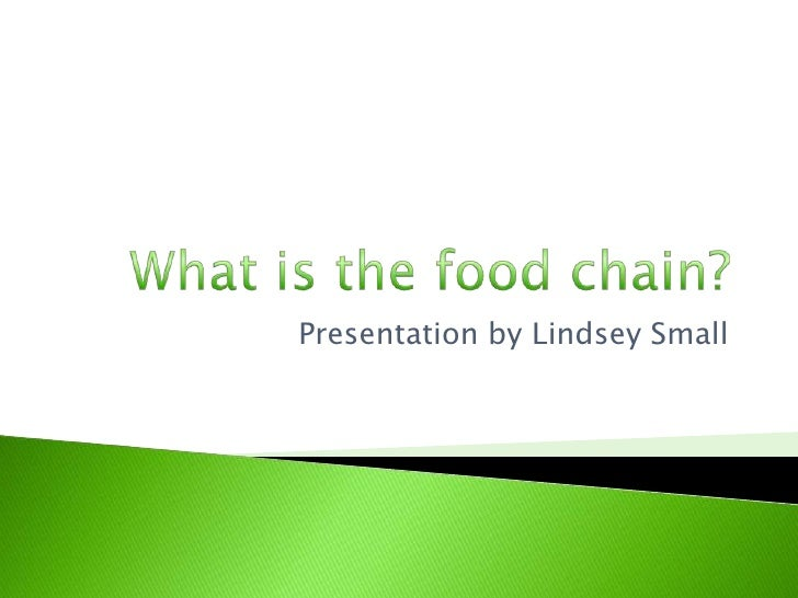 What is the food chain?<br />Presentation by Lindsey Small<br />