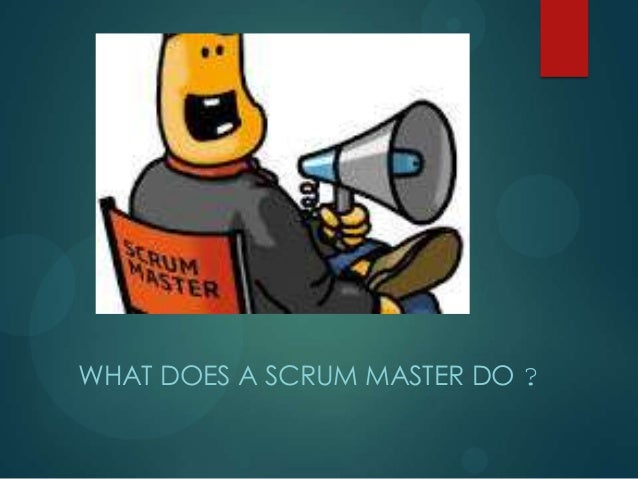 WHAT DOES A SCRUM MASTER DO ?