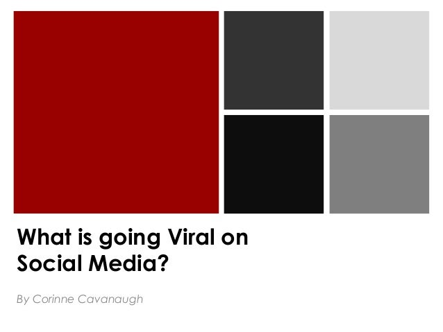 What is going Viral on Social Media? By Corinne Cavanaugh
