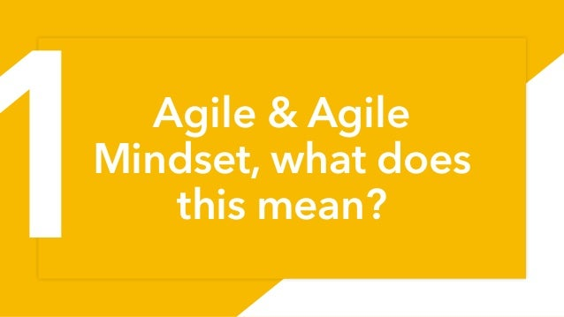Agile & Agile Mindset, what does this mean? 1 1
