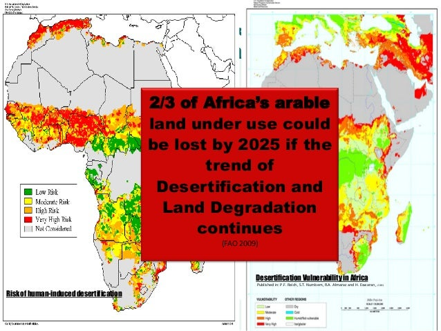 What lasting solutions to desertification - land degration issues l…
