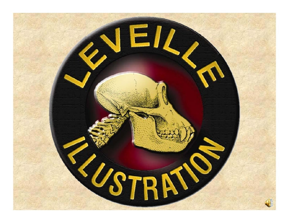 LEVEILLE ILLUSTRATION  Medical and Veterinary  Illustration Services   Custom Animal Artwork   Signs, Banners, Murals,  an...