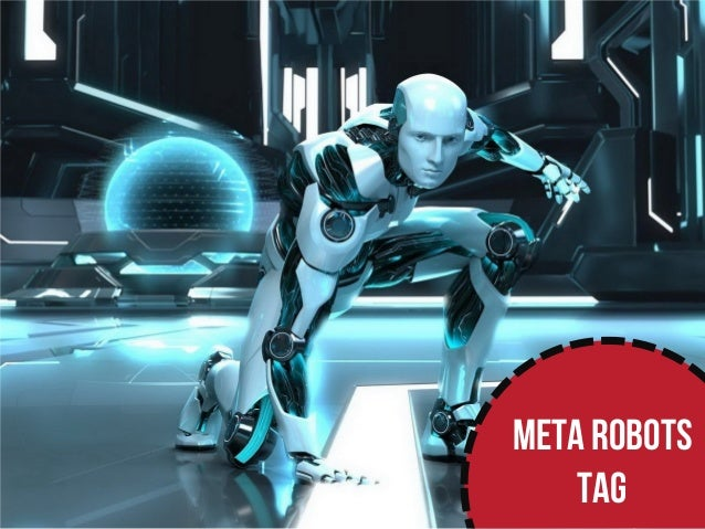 What Meta Robots Tags Are for (Public) Slide 2