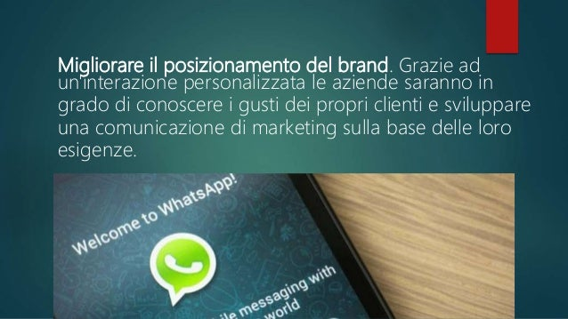 Cosa fare prima di avviare qualsiasi attività di WhatsApp marketing