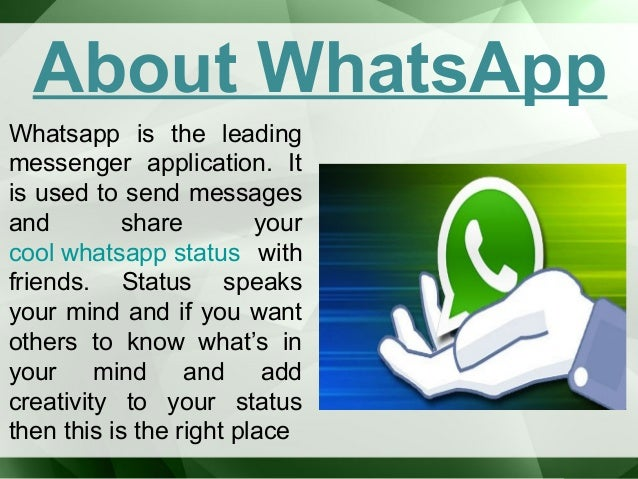 Best Things About Whatsapp Status