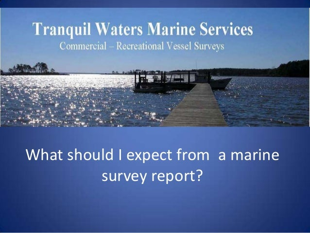 What should I expect from a marine         survey report?