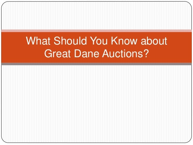 What Should You Know about Great Dane Auctions?
