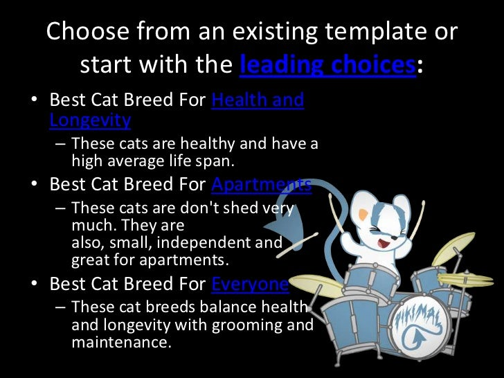 Best Cat Breeds For Low Maintenance No Shed