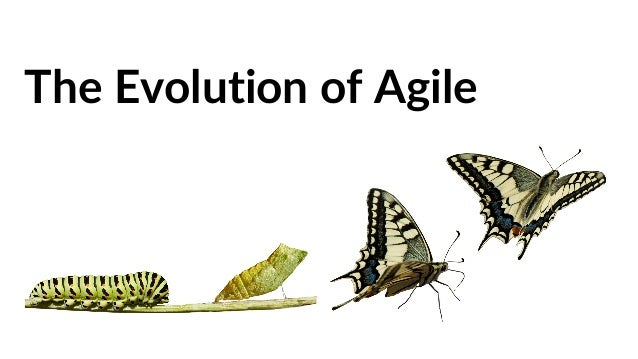 what u0026 39 s the next step in the evolution of agile  enterprise