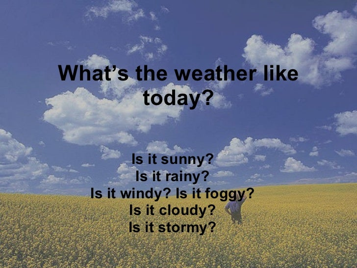 What's the weather like today? Is it sunny? Is it rainy? Is it windy? Is it foggy? Is it cloudy? Is it stormy?