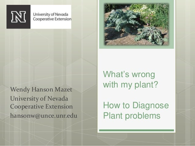 What's wrong with my plant? How to Diagnose Plant problems Wendy Hanson Mazet University of Nevada Cooperative Extension h...